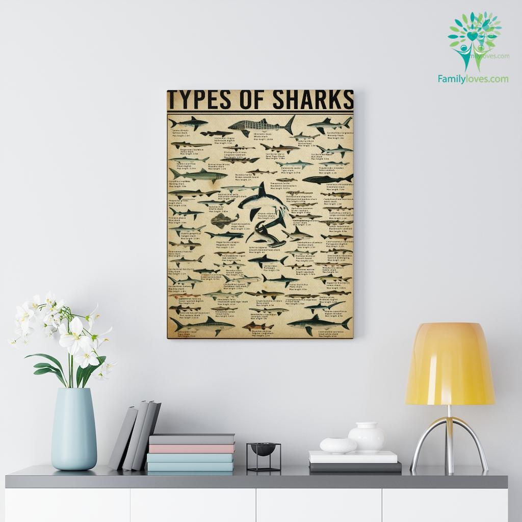 Types Of Sharks Canvas Familyloves.com