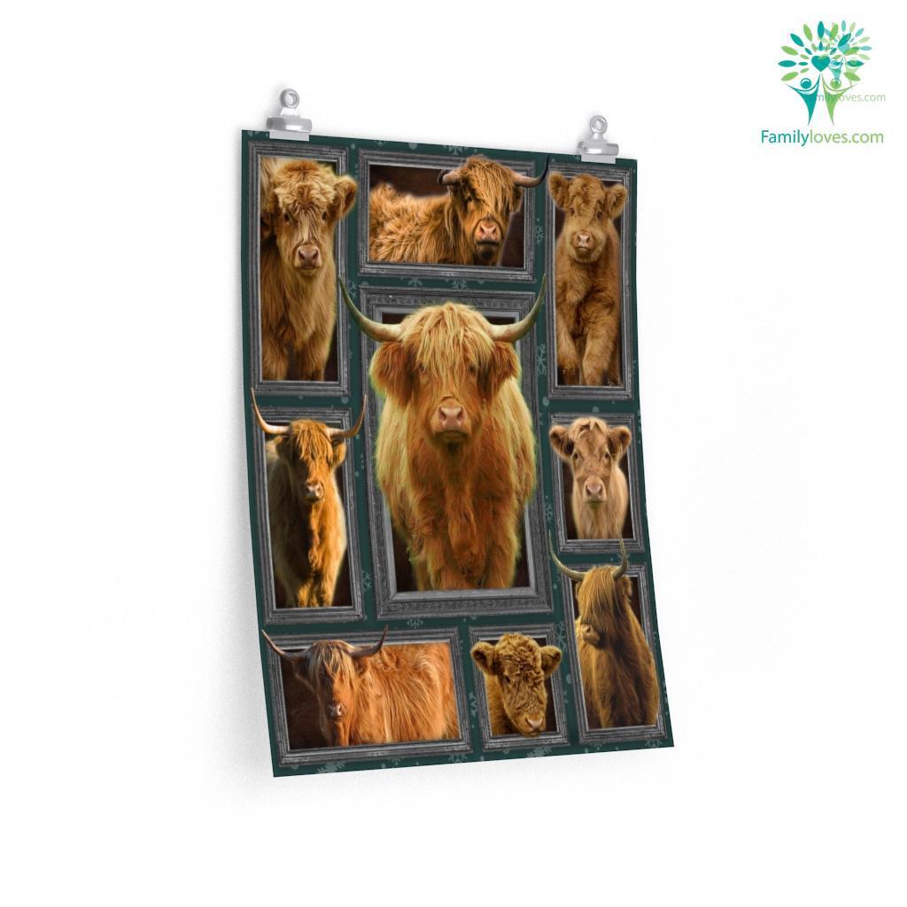 Cow Posters Familyloves.com
